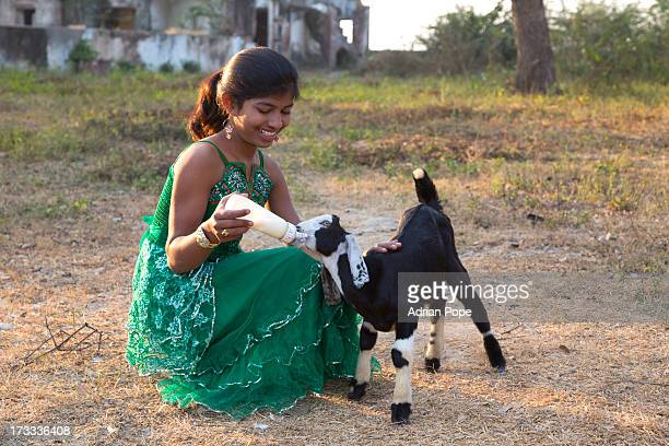 Young girl feeding goat in rural India