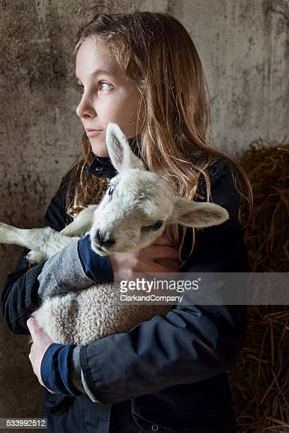 Young Girl Holding a 4 Day Old Lamb
