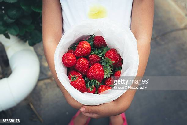 Young girl holding a bucket of fresh strawberries