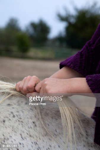 young girl holding the crane of a horse : Bildbanksbilder