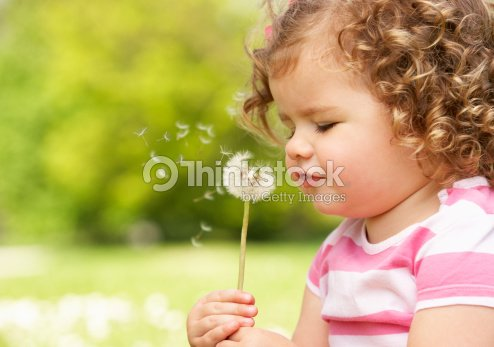 Young Girl In Summer Dress Sitting In Field Blowing Dandelion : Stock Photo