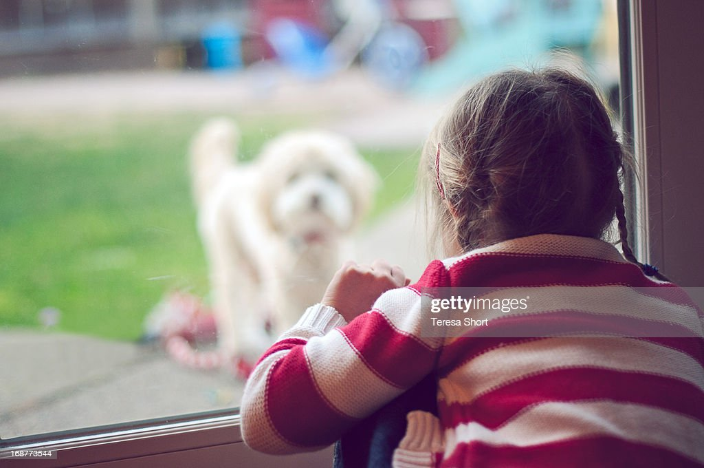 Young Girl Looking At Dog Through Window : Stock Photo