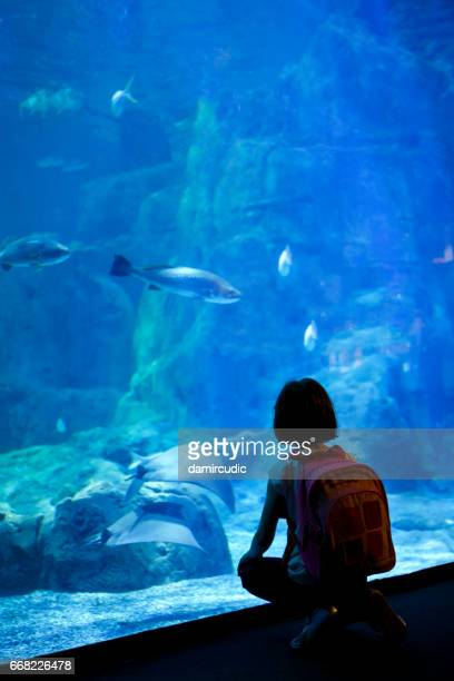 Young girl looking at the fish in a big aquarium