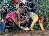 A young girl of a migrant's family is helped by her father as they creep under a barbed fence near the village of Roszke at the HungarianSerbian...