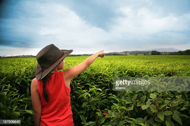 young girl on tea farm