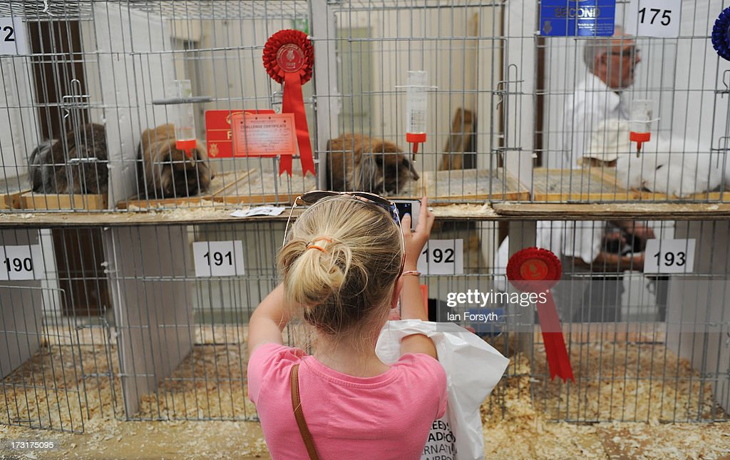 A young girl photographs the rabbits at the Great Yorkshire Show on July 9, 2013 in Harrogate, England. The Great Yorkshire Show is the UK's premier agricultural event and brings together agricultural displays, livestock events, farming demonstrations, food, dairy and produce stands as well as equestrian events to thousands of visitors over the three days.