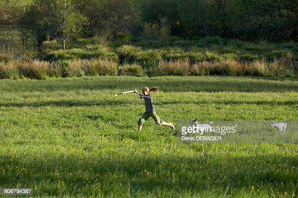 Young girl playing with her dogs in a field