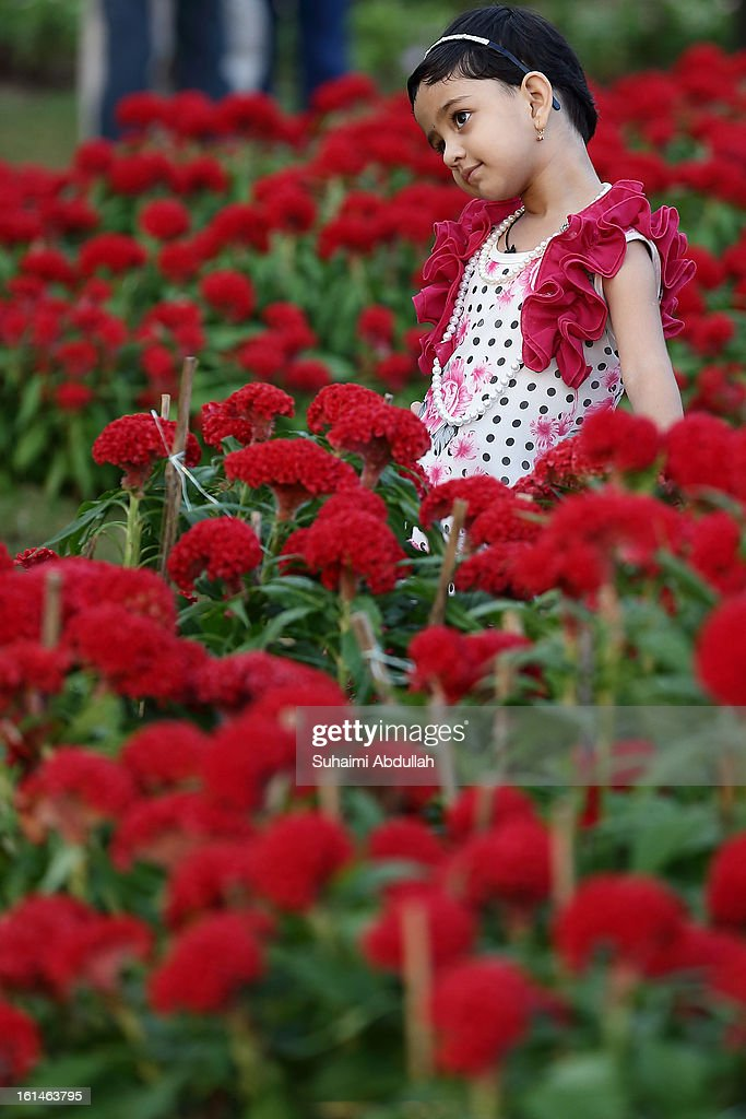 A young girl poses for a photograph in front of a giant floral carpet, made up of 30000 real flowers at the Sentosa Flowers exhibition at Palawan Beach on February 11, 2013 in Singapore. Millions of spring flowers decorate the island in celebration of the Chinese New Year, the year of the Snake.