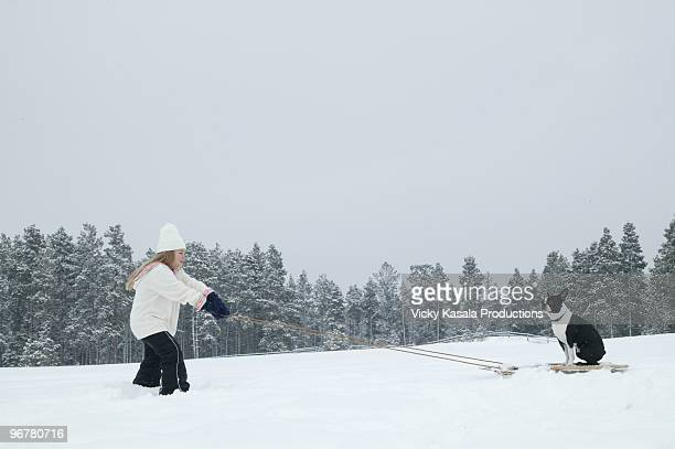 young girl pulling her dog on sled