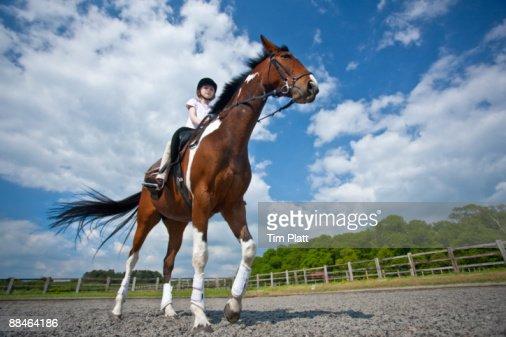 Young girl riding a horse. : Photo