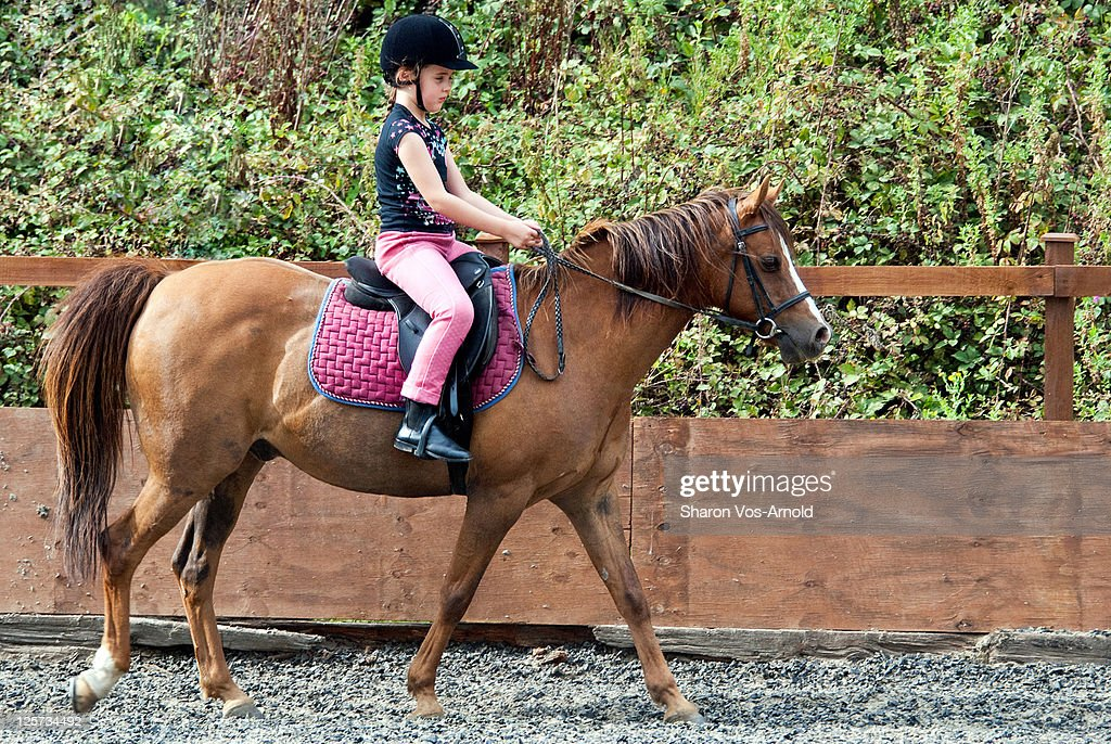 Young girl riding chestnut pony in sandschool