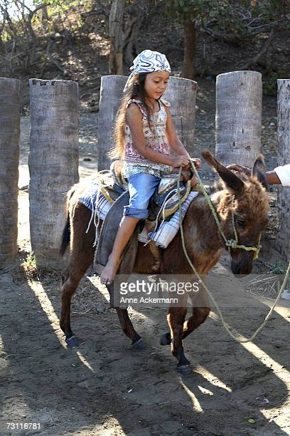 Young girl (6-7) riding donkey