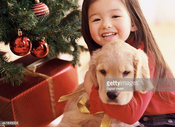 Young Girl Sits by a Christmas Tree Embracing a Puppy