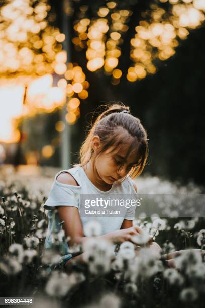 Young girl sitting in the field full of dandelions