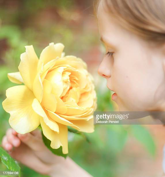 Young girl smelling yellow rose