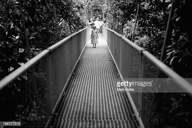 A young girl stands on the Rex Creek suspension bridge in the world heritage listed daintree rainforest on November 13 2012 in Mossman Gorge...