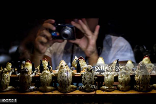 A young girl takes a picture of a display of models of frogs attending a banquet on June 22 2017 at the Frog Museum in EstavayerleLac western...