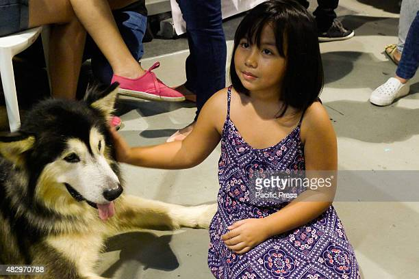 A young girl touches the furry head of a Siberian Husky at the trade fair Different breeds of dogs and cats Dog breeders Pet lovers unite for the...
