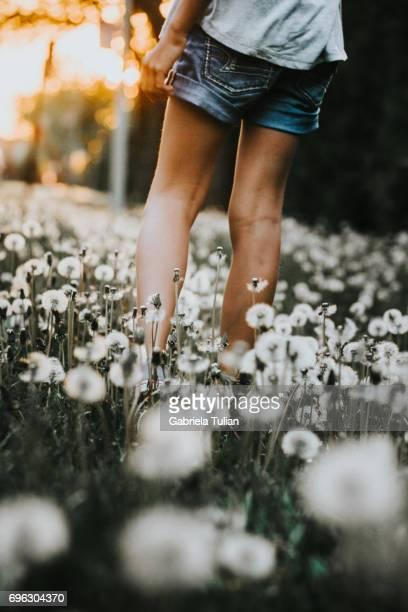 Young girl walking in a field full of dandelions