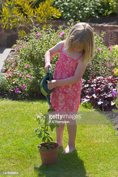 Young girl watering a young oak tree MR PR