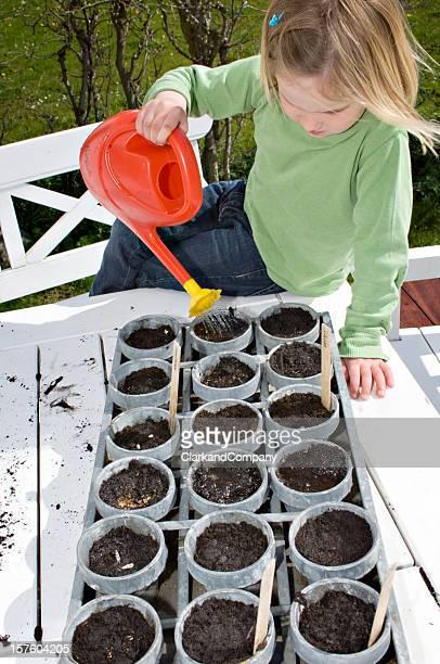 Jeune femme arroser ses graines