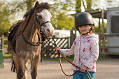 Child holding reins of brown and white Welsh cob horse after riding lesson