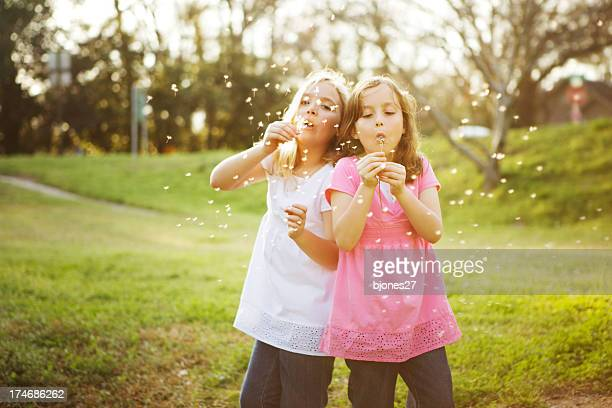 2 young girls blowing seeds into the air in a field