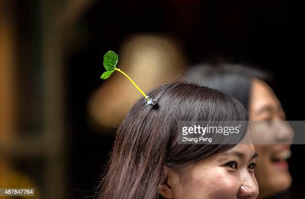 Young girls clip plastic grass or seedling on their hair 'Seedling on head' a slim and high plastic grass or flower decorated on the head becomes a...