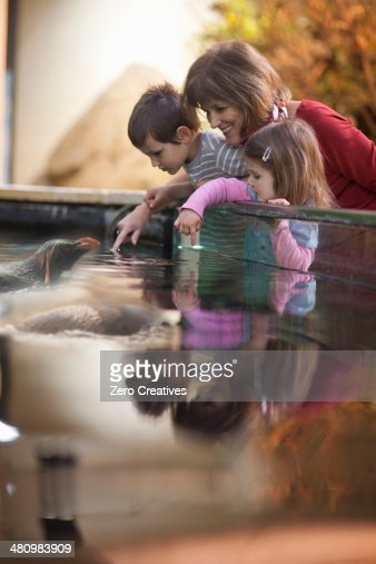Young grandchildren and grandmother watching penguin at zoo
