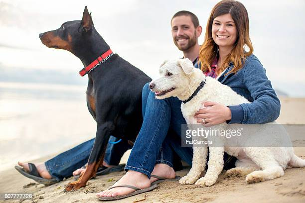 Young heterosexual couple at the beach with their pets