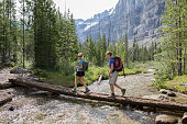 Young hikers cross log bridge above mtn creek