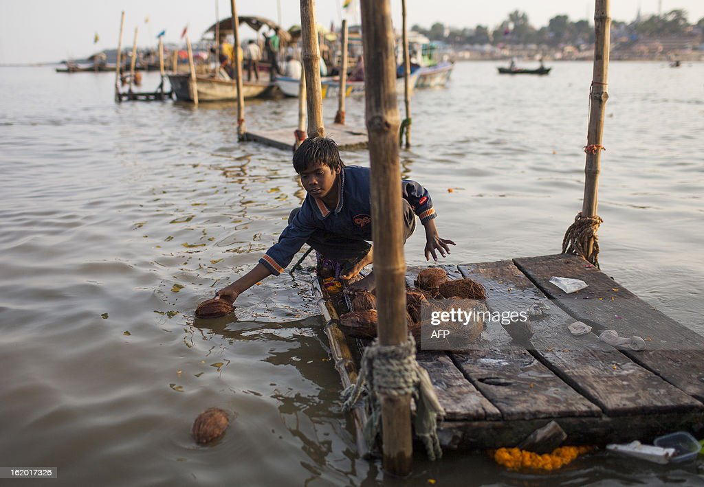 A young Indian boy collects coconuts given as offerings by devotees, to sell to other worshipers, at the Sangam or confluence of the Yamuna, Ganges and mythical Saraswati rivers at the Kumbh Mela in Allahabad on February 18, 2013. The Kumbh Mela in the town of Allahabad will see up to 100 million worshippers gather over 55 days to take a ritual bath in the holy waters, believed to cleanse sins and bestow blessings. AFP PHOTO/ Andrew Caballero-Reynolds