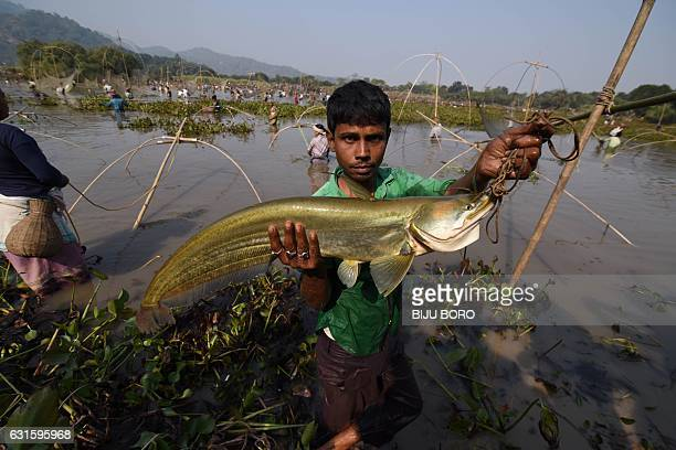 A young Indian villager takes part in a community fishing event during the Bhogali Bihu celebrations at Goroimari Lake in Panbari some 50 kms from...
