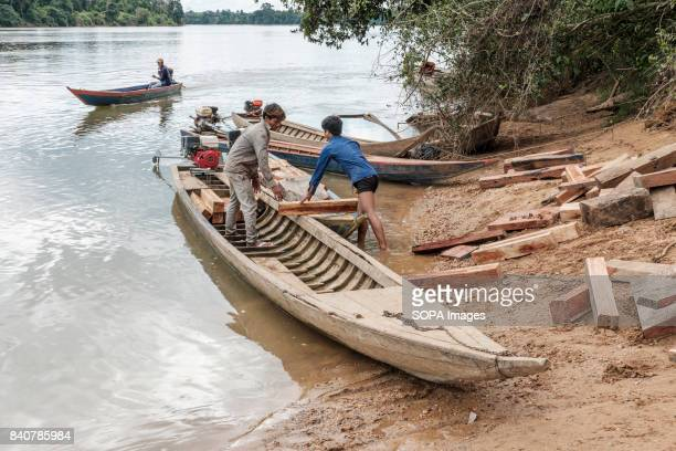 Young Kachock men load motorboats with Teak wood for transportation down the river in order to sell onwards The popularity of Teak furnitures in the...
