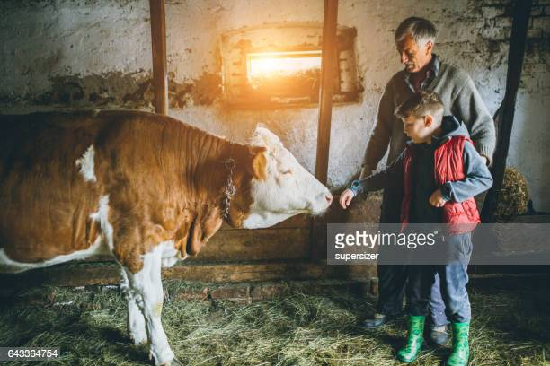 young kid is farmer