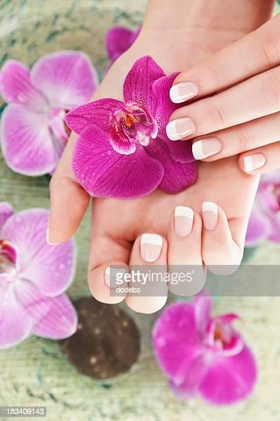 Belles mains tenant fleur