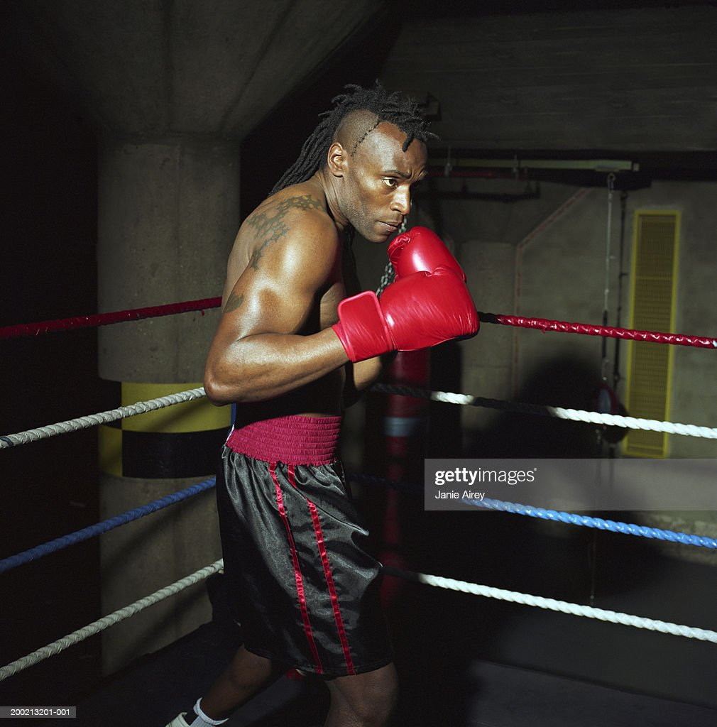 Young male boxer in ring, gloves raised, side view : Stock Photo