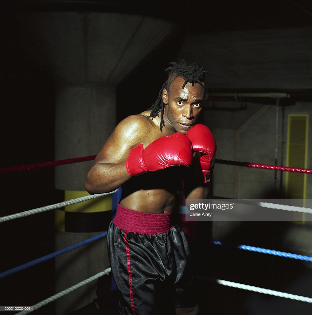 Young male boxer in ring, gloves raised to chin, portrait : Stock Photo