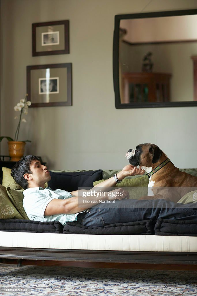 Young man and dog lying on sofa, man petting dog, side view : Stock Photo