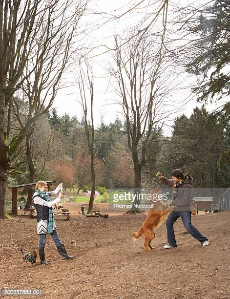 Young man and woman with dogs in dog park, woman photographing man