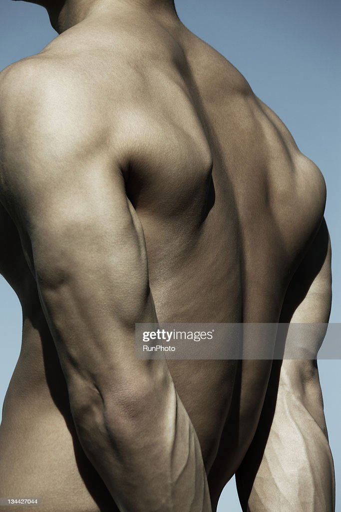 young man body close-up,back