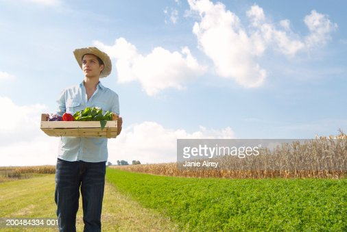 Young man carrying pallet of vegetables in field : Stock Photo