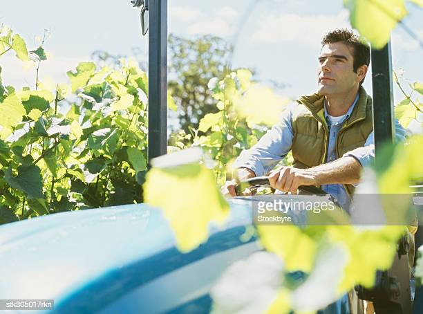 young man driving a tractor in a vineyard