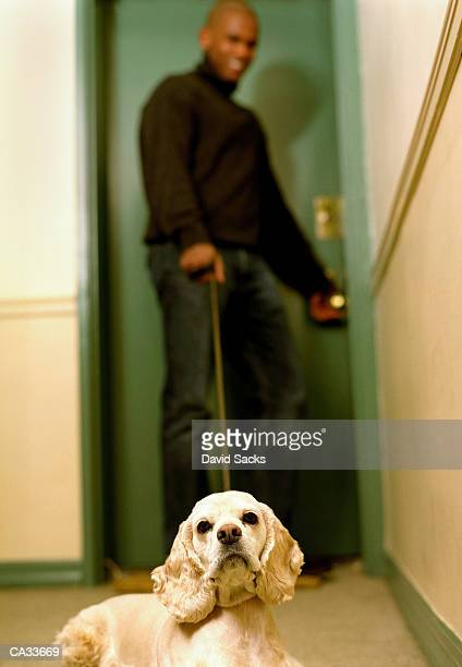 Young man leaving apartment with cocker spaniel (focus on dog)
