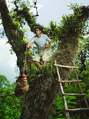Young man lifting bundle up into tree house
