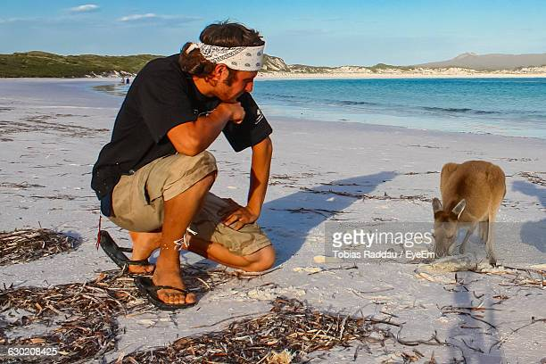 Young Man Looking At Kangaroo On Shore