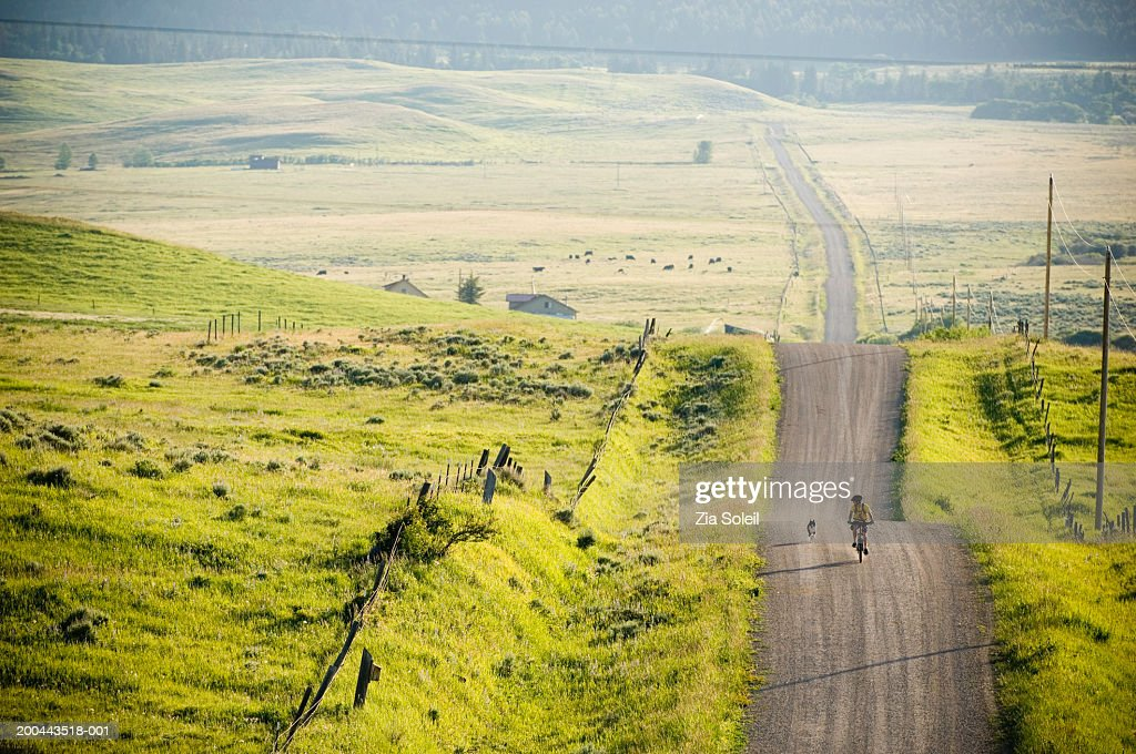 Young man riding bicycle on rural road, dog running alongside : Stock Photo
