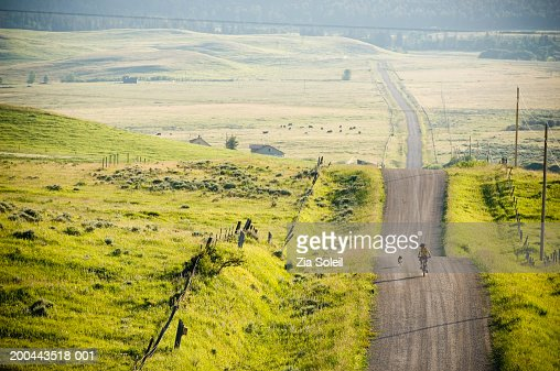 Young man riding bicycle on rural road, dog running alongside : Stockfoto