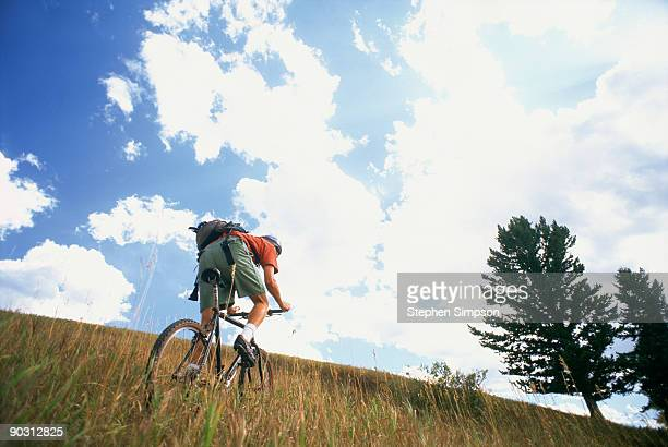 Young man (23) riding mountain bike in field