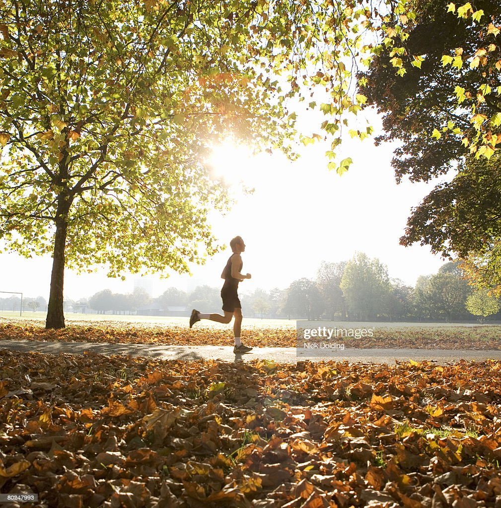 Young man running in park. : Stock Photo